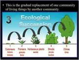 Ecology Plant Succession Quiz Game