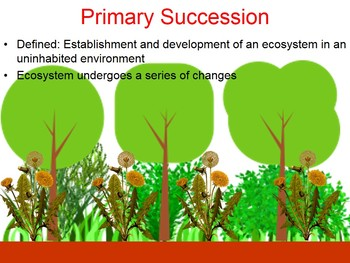 Ecological Succession (Primary vs Secondary) PowerPoint
