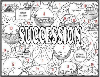 Ecological Succession Seek and Find Science Doodle Page