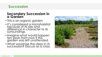Ecological Succession - Supplemental Lesson - No Lab