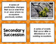 Ecological Succession Vocabulary Sort