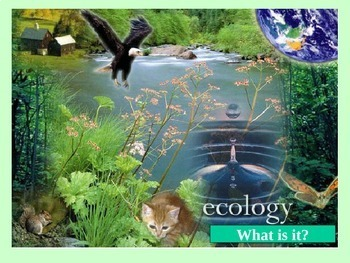 Ecology (basic/intro)