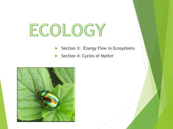 Ecology 2 PowerPoint Lesson and Writing Activities