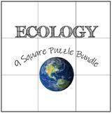Ecology: 9 Square Puzzle Card Sort Bundle