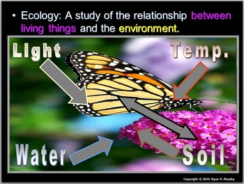 Ecology Unit, Nonliving Factors, Cycles
