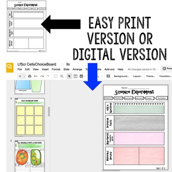 Ecology Activities Choice Board, Digital Graphic Organizers