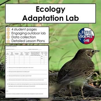 Ecology Adaptation Lab