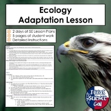 Ecology Adaptation Lesson