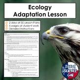 Ecology Adaptation Lesson