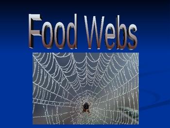 Ecology Basics: Foodwebs!