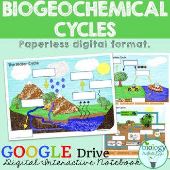 Ecology- Biogeochemical Cycles Digital Interactive Notebook for Google