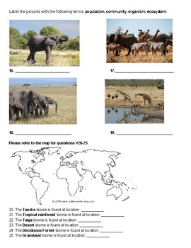 Ecology & Biomes Test