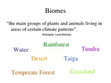 Ecology - Biomes and Food Chains and Webs