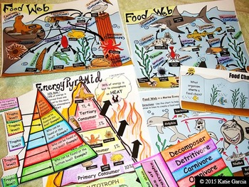 Ecology Bundle - Food Webs, Food Chains, Hands-on Cut Out Activities