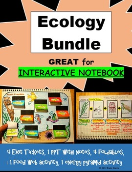 Ecology Bundle - Food Webs, Food Chains, Hands-on Cut Out