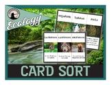 Ecology Card Sort