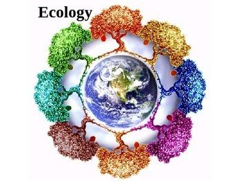 Ecology Cloze