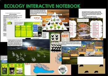 Ecology Review with Google Apps