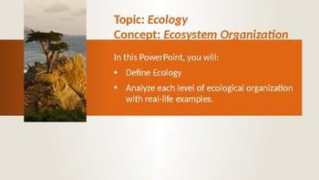 Ecology: Ecosystem Organization