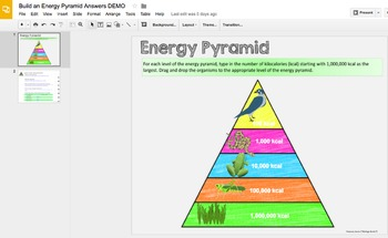 Ecology Energy Flow- Digital Interactive Notebook