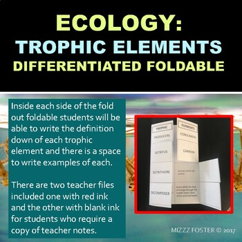 Ecology Energy Flow: Trophic Elements Differentiated Foldable