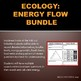 Ecology: Energy Flow, Trophic Levels, Food Chains & Web Bundle