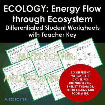 Ecology: Energy Flow, Trophic Levels, Food Chains & Web WORKSHEETS