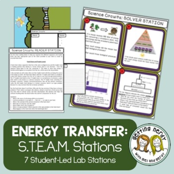 Ecology - Science Centers / Lab Stations - Food Chains Webs Energy Pyramid