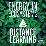 Ecology:  Energy in Ecosystems, Distance Learning for Midd