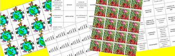 Biology: Ecology, Evolution, and Plants Matching Games