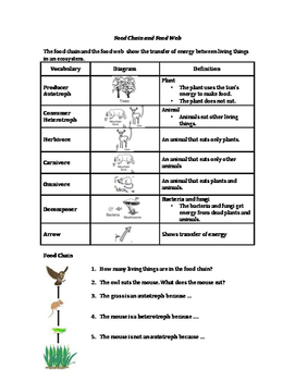 Ecology: Food Web and Species Interaction  (Living Environment / ESL)