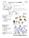 Ecology Food Webs