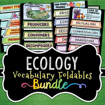 Ecology Foldables - BUNDLE - Save 30%