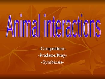 Ecology Fundamentals: Animal Interactions