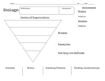 Ecology Graphic Organizer