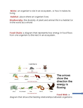 Ecology-Human Impact Quick Notes Study Guide