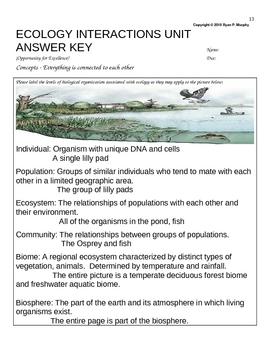 Ecology Homework, Animal Interactions