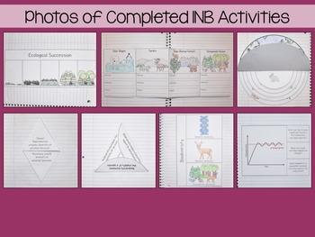 Ecology Interactive Notebook Unit