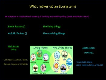 Ecology Interdependence of Life Power Point