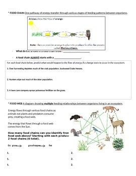 Ecology Interdependence of Living Things Guided Notes