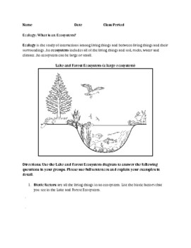 Ecology: What is an Ecosystem? (Living Environment / ESL)