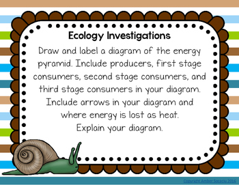 Ecology Investigations Journal Prompts