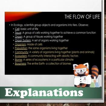 Ecology Level Notes