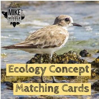 Ecology Matching Concept Cards