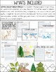 Ecology Museum Project Based Learning (PBL) Unit About Ecosystems & Adaptations