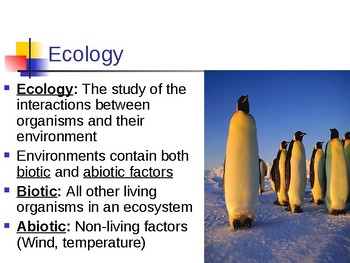 Ecology Notes/Powerpoint