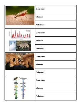 Ecology Observation, Inference, and Prediction