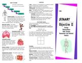 Ecology, Photosynthesis, Body Systems, Homeostasis/Feedbac