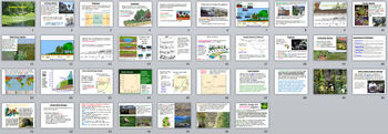 Ecology PowerPoint Presentations