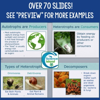 Ecology PowerPoint and Notes: The Biosphere